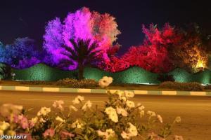 نورپردازی های زیبا، جاذبه جدید شب های کیش برای نوروز 1400