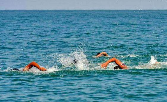 برگزاری اردوی آماده سازی تیم ملی شنای آبهای آزاد در کیش